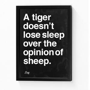 Quote of the Day - A tiger doesn't lose sleep over the opinion of sheep